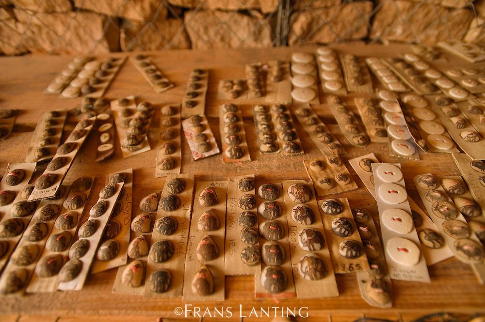 Local crafts at visitor center, Twyfelfontein World Heritage Site, Uibasen Conservancy, Damaraland, Namibia