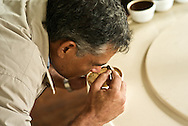 Coffee tasting at Finca Lerida Plantation and Hotel (Panama)caffeine, Coffea canephora, cultivated, flavor, chaoua, kahve, robusta, Rubiaceae, Coffea arabica, coffee cultivation, process, flavor, aroma, Commodity, fresh produce, Coffee futures contracts, industry, economy,