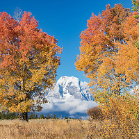 Mount Moran during autumn in Grand Teton National Park