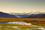 Reflection of eastern Alaska Range bathed in alpineglow at sunset on pond in the Maclaren River Valley with the Maclaren Glacier in Interior Alaska. Autumn.