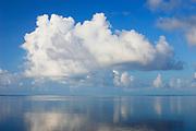 Cumulus clouds and calm water over reef on south shore of Molokai at Kapuaiwa Royal Coconut Grove;  Kaunakakai, Molokai, Hawaii.