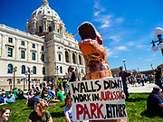 22 APRIL 2017 - ST. PAUL, MN: A person in an inflatable T-Rex suit at the Minnesota State Capitol during the March for Science. More than 10,000 people marched from the St. Paul Cathedral to the Minnesota State Capitol in St. Paul during the March for Science. March organizers said the march was non-partisan and was to show support for the sciences, including the sciences behind climate change and vaccines.       PHOTO BY JACK KURTZ