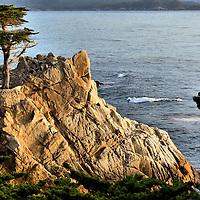 Carmel to Santa Cruz