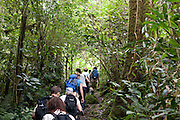 Sabah Youth Conservation Expedition 2010