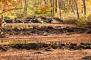 Goshen, New York - Autumn leaves float on Black Meadow Creek on Oct. 19, 2016.