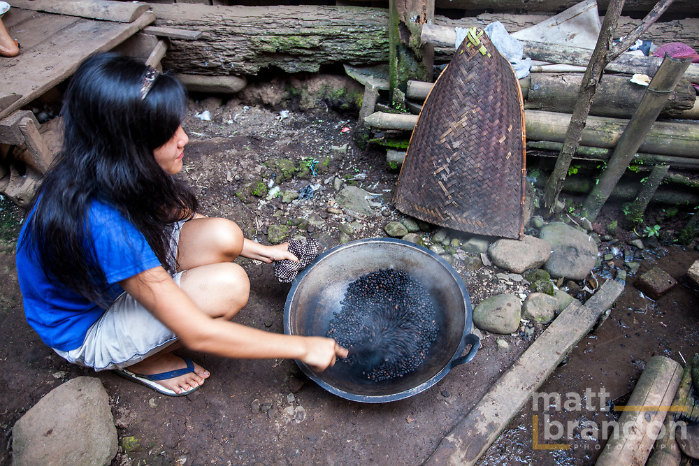 A young Lintang resident roasts coffee beans in her back yard in a wok. Sumatra, Indonesia