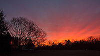 Backyard Winter Dawn in New Jersey. Image taken with a Nikon 1 V2 and 10 mm f/2.8 lens (ISO 200, 10 mm, f/11, 1/4 sec).