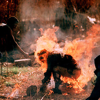 SOUTH AFRICA 15SEP90 - A manhacks at a burning Lindsay Tshabalala with a machete, a Zulu killed as a suspected Inkatha member by African National Congress supporters.  Over 3,000 people died in 1990 as a result of ANC-Inkatha violence that was provoked by a state-sponsored destabilisation programme, prior to South Africa's first democratic elections in 1994.  (Photo by Greg Marinovich )