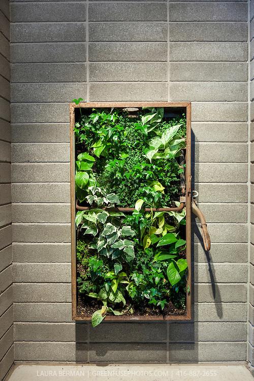Living Wall GreenFuse Photos Garden farm food