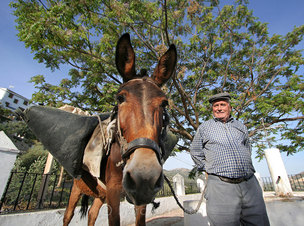 Old Spanish man with his mule, Andalucia, Spain.