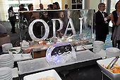 ASCE-2012 OPAL