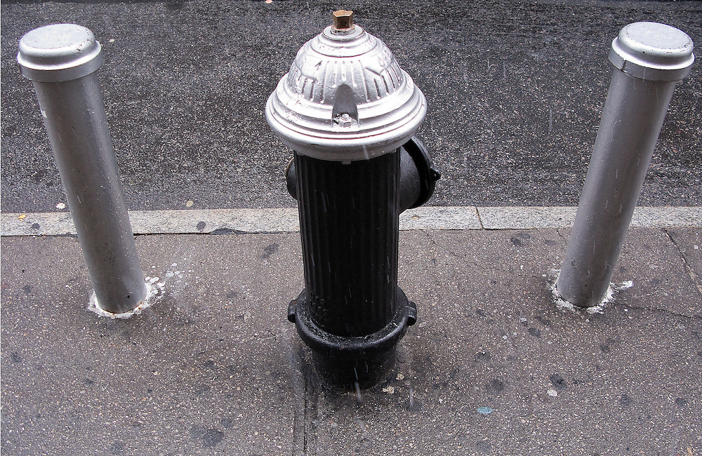 A black and silver New York City Fire Hydrant protected by a pair of silver poles.
