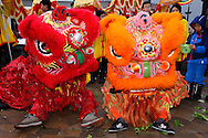 Chinese New Year, Montreal, Quebec, Canada