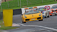 Safety Car.Armor All Bathurst 12hr Race.February 13th & 14th 2010.Mt Panorama Circuit, Bathurst, NSW, Australia.(C) Joel Strickland Photographics.Use information: This image is intended for Editorial use only (e.g. news or commentary, print or electronic). Any commercial or promotional use requires additional clearance.