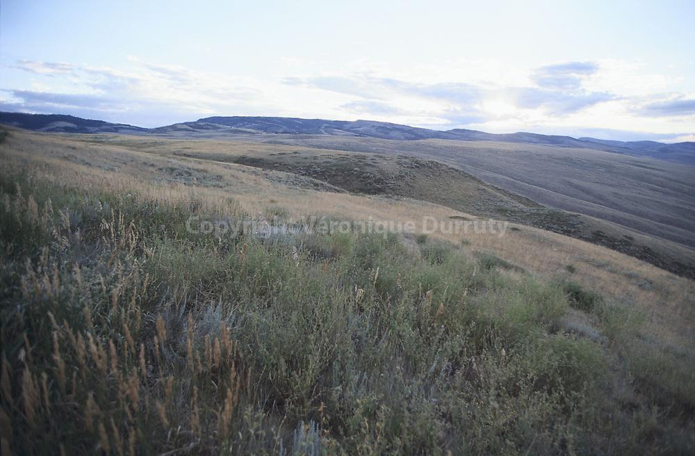 Paysage du Colorado, USA