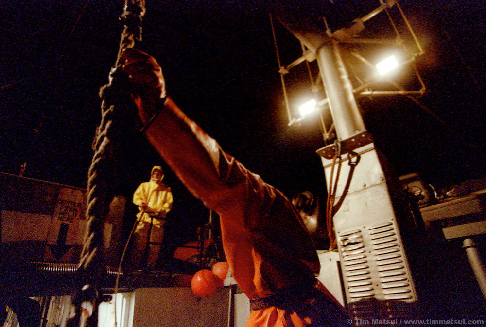 Offloading freshly caught salmon at night in the Bristol Bay fishery.