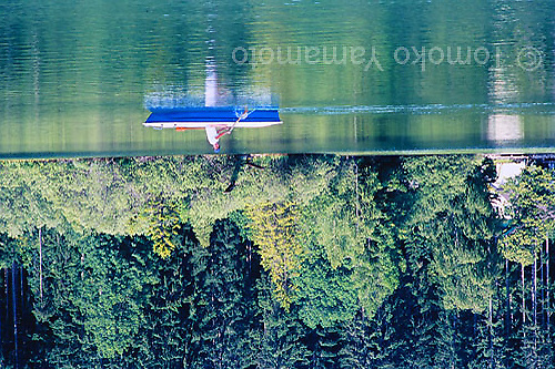 Young man in a rowboat turns his head around on the Erlaufsee, Lake Erlauf, a small lake surrounded by evergreen trees on one side.  Reflection of the light green desiduous trees in lake water.