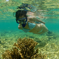 MR- Model released photo of a tourist snorkeling