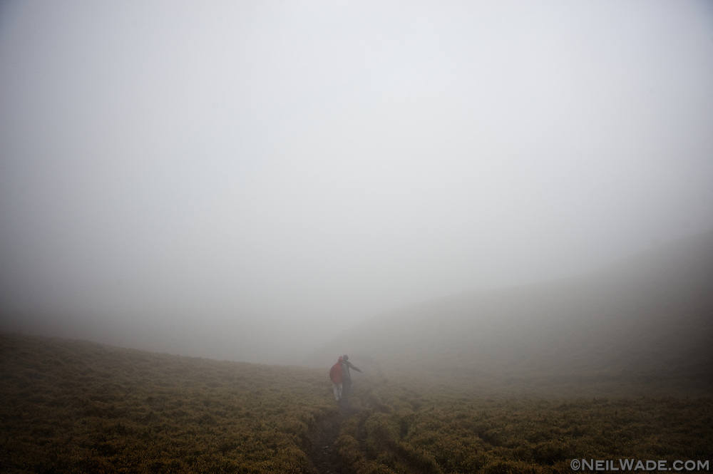 Hiking down, through the mist on Taiwan's spine - The NengGao Mountains.