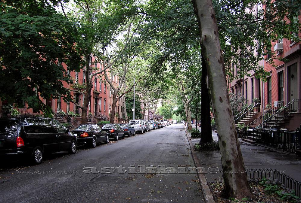 Green street of Brooklyn