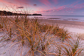 Coastal / Beach