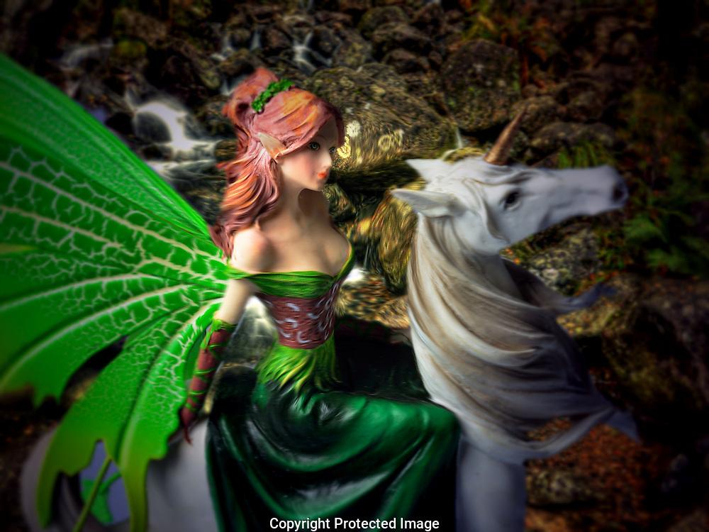 Glimpse of a Woodland Fairy