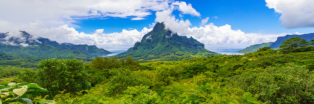 Belvedere Lookout, Cook's Bay, Opunohu Bay, Moorea, French Polynesia