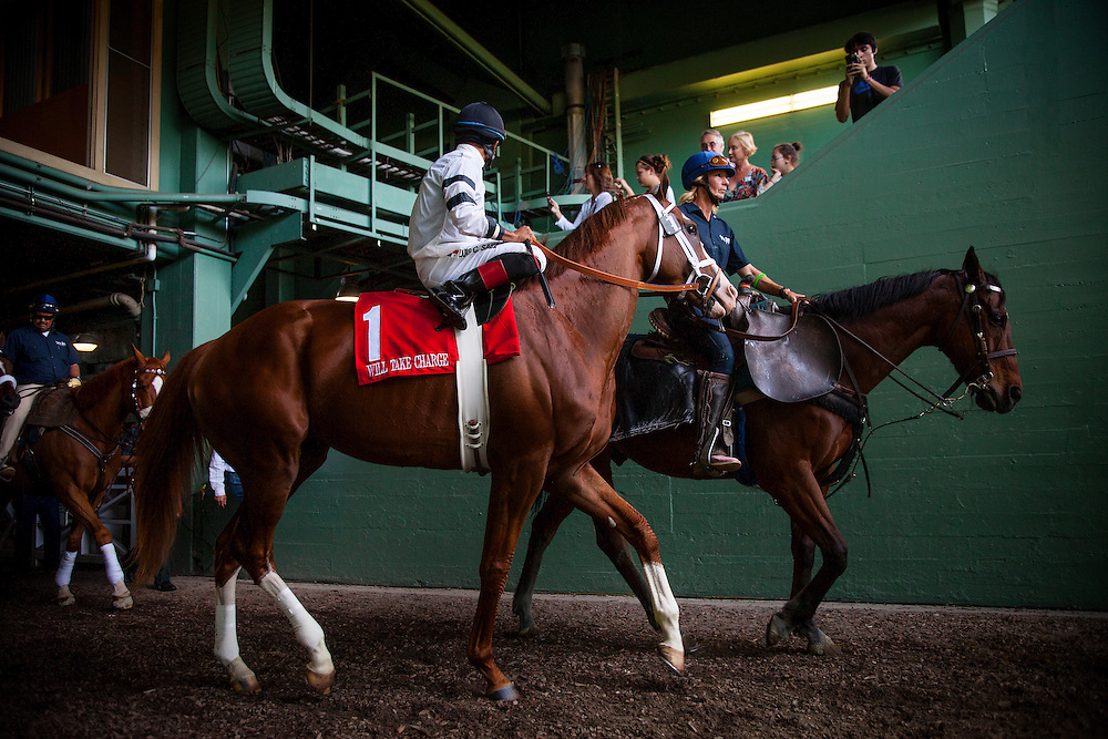 Will Take Charge, ridden by Luis Saez at the Santa Anita Handicap (G1) at Santa Anita Park on March 8, 2014 in Arcadia, California (Photo by Evers/Eclipse Sportswire)\