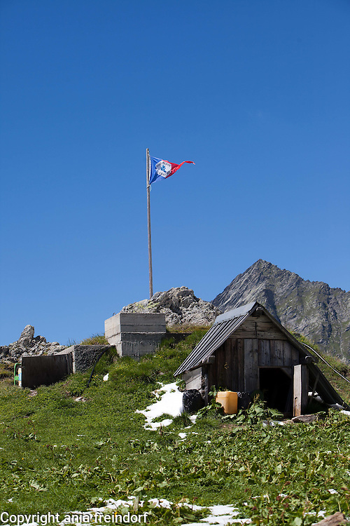 French Alps, summer, mountains, hiking, nature, forest, climate change, glaciers, global agenda.