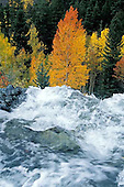 Colorado Rivers & Streams