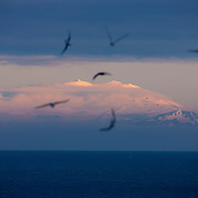 "Several seabirds fly over the Atlantic Ocean as the last light of day illuminates Snæfellsjökull, a glacier-covered stratovolcano in western Iceland. Located on the Snæfellsnes peninsula, Snæfellsjökull is 1,446 meters (4,744 feet) tall. Stratovolcanoes, also known as composite volcanoes, are typically cone-shaped and made up of many layers from many volcanic eruptions. Snæfellsjökull is approximately 700,000 years old and is estimated to have last erupted in 200 A.D. Snæfellsjökull is an Icelandic word meaning ""snowy mountain glacier."""