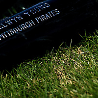 BRADENTON, FL -- January 13, 2010 -- The bat of Pittsburg Pirates infielder Delwyn Young lays in the grass during workouts at the Pirate City Spring Training Headquarters in Bradenton, Fla., on Wednesday, January 13, 2010.  (Chip Litherland for the Chip Litherland for the Pittsburgh Tribune-Review)