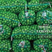 """""""De la semilla a la limonada"""".  EXPANSION 1155, Fotogalería (14 paginas) diciembre de 2014"""