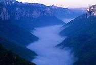 France,Languedoc Roussillon, Lozère, Cevennes, Gorges du Tarn