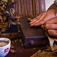 Editorial: Waking with Little Havana