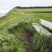 From the beach at Ebey's Landing along the Samish Sea, hike the Bluff Trail in Ebey's Landing National Historical Reserve, on Whidbey Island, Washington, USA.