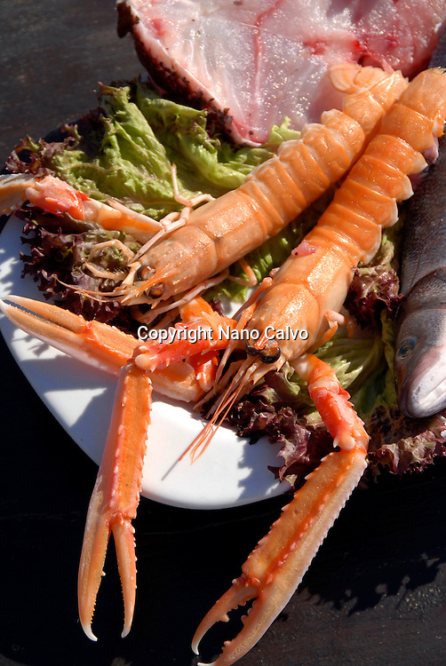 Assorted fresh crayfish on the table of a coastal ibizan restaurant called Sa Escollera, in Ibiza, Balearic Islands, Spain - Photo by Nano Calvo - VWPics.com