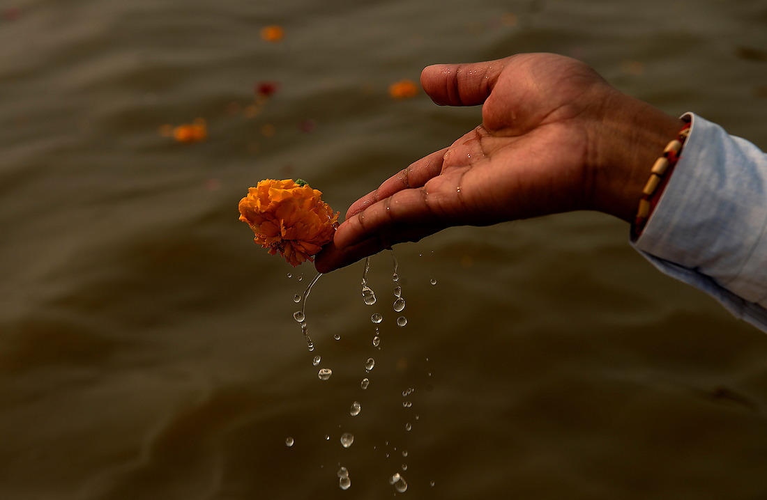 A Kumnbh Mela pilgrim pays homage to his ancestors and gods by cupping the Ganges river water in his hands with a flower, lifting it and letting it fall back into the river on February 5, 2013 in Allahabad, India. — © Jeremy Lock/