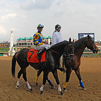 Street Sense with Calvin Borel take the track just prior to the running of the 133rd Kentucky Derby