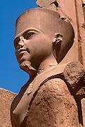 EGYPT, THEBES, KARNAK TEMPLE Temple of Amun; King Tut (Tutankhamun)