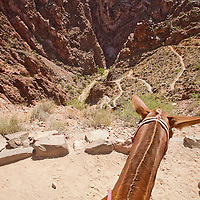 "The Bright Angel trail view where it drops into Pipe Creek down the switch backs known as the ""Furnance""."