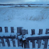 Europe, Norway, Old wooden fence on farm outside northern town of Kirkennes in early winter.