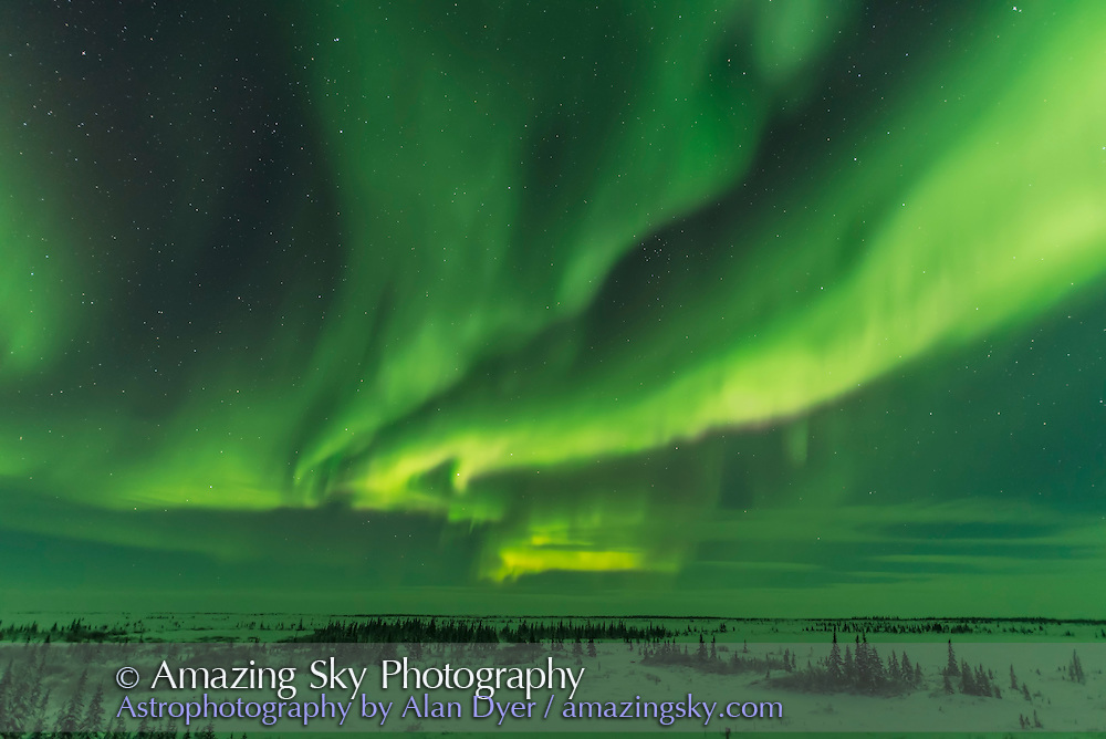 A bright aurora begins to dance over the Hudson Bay Lowlands at the Churchill Northern Studies Centre, Manitoba, on January 28, 2017. This is one frame from a 320-frame time-lapse. For 3 seconds at f/1.4 and ISO 3200.