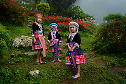 Hill Tribe Girls in Chiang Mai, Thailand