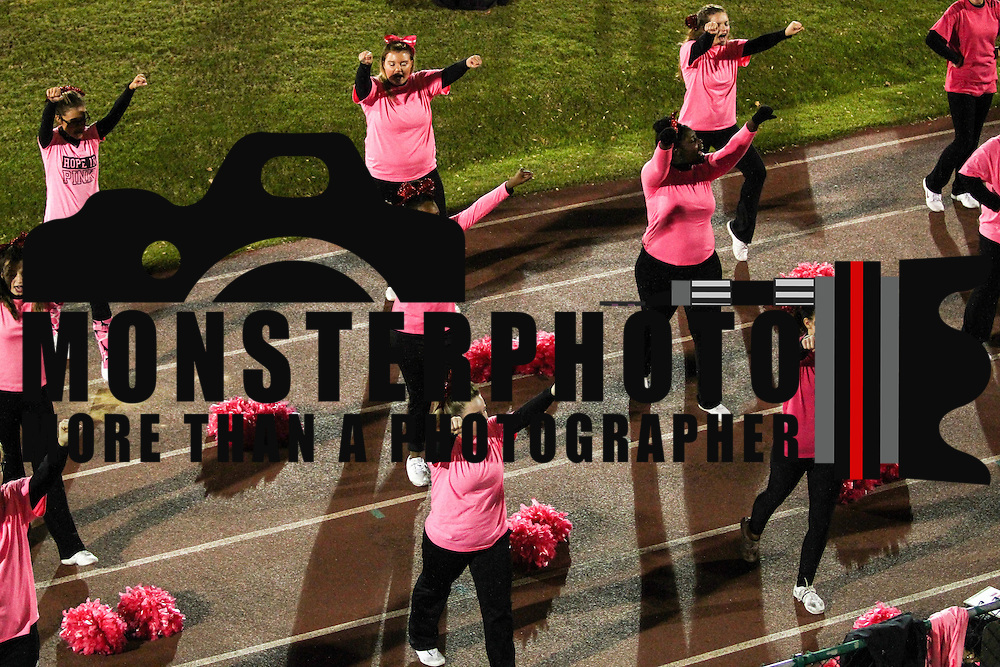 Laurel cheerleaders performs during a Week 8 DIAA football game between Laurel and Delaware Military Academy Saturday, Oct. 29, 2016, at Baynard Stadium in Wilmington.