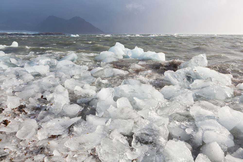 Ice, calved by Hansbreen (visible in the distance), on the coast in Hornsund, Svalbard.