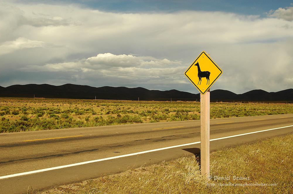 Llama crossing sign on road near La Paz, Bolivia