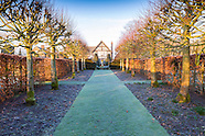 February at Wollerton Old Hall Garden 1