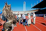 9-9-2015 AMSTERDAM - Deelnemers van de rolatorrun 2015 in actie in het Oympisch stadion in Amsterdam tijdens de rolatorrun. De deelnemers strijden om de eerste plaats tijdens de 400 meter finale.meer dan 100 ouderen hebben deel genomen aan de race. ouderen, rolator, sport, sporten, bewegen, beweging, pensioen, oudedag, rennen, sporten, rennen  Op woensdag 9 september kan iedereen met een rollator weer meedoen aan de grote rollatorloop in het Olympisch Stadion. De Rollatorloop is speciaal in het leven geroepen om elkaar op te peppen om in beweging te blijven. Bewegen is immers d&eacute; manier om zo gezond mogelijk te blijven. Foto Deelnemers aan de rollatorloop 2015 in het Olympisch Stadion. COPYRIGHT ROBIN UTRECHT<br /> 9-9-2015 AMSTERDAM - Participants of the rolatorrun 2015 in action in the Oympisch stadium in Amsterdam during the rolatorrun. The participants compete for the first place in the 400 meter finale.meer than 100 elderly people have taken part in the race. elderly, rolator, sport, sports, exercise, movement, retirement, old age, racing, sports, racing . COPYRIGHT ROBIN UTRECHT