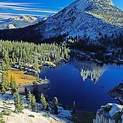 California: Sierras: Yosemite National Park